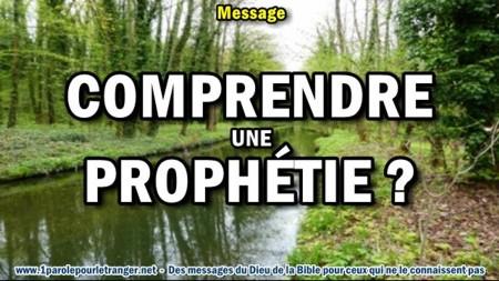 2018 0426 comprendre une prophetie minia1