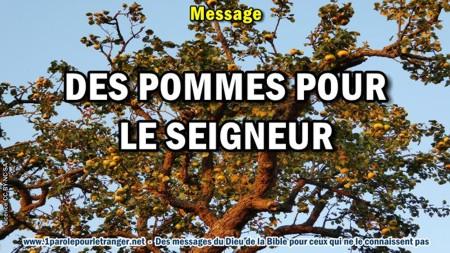 2018 0927 1 des pommes pour le seigneur minia1