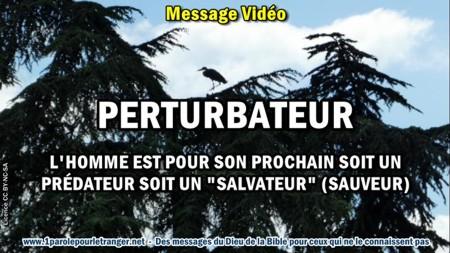 2019 0116 perturbateur minia1