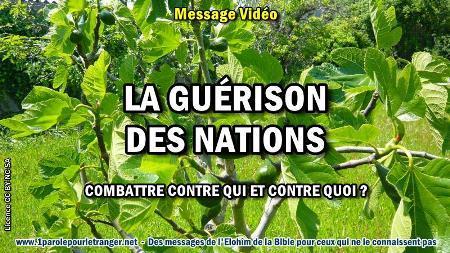 2020 0514 la guerison des nations minia1 450
