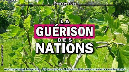 2020 0514 la guerison des nations minia2 450